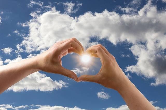 Love Heart Form - Free photo on Pixabay (372264)