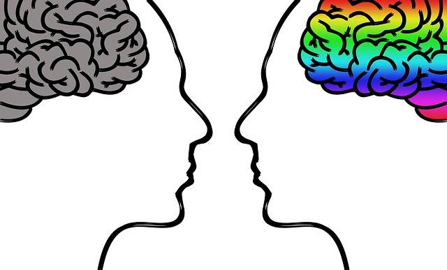 Head Brain Thoughts Human - Free photo on Pixabay (372961)