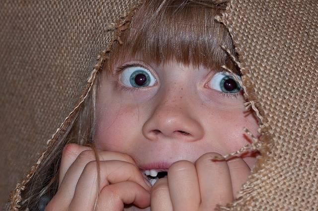 Person Human Girl - Free photo on Pixabay (374771)