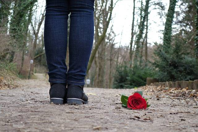 Red Rose On The Floor Love Sad - Free photo on Pixabay (375303)