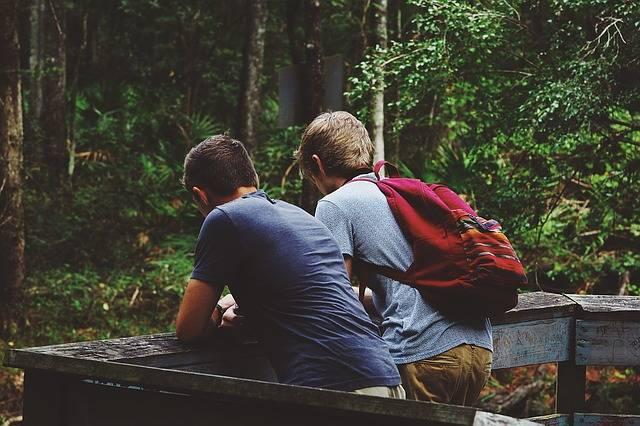 Friendship Nature Landscape - Free photo on Pixabay (381306)