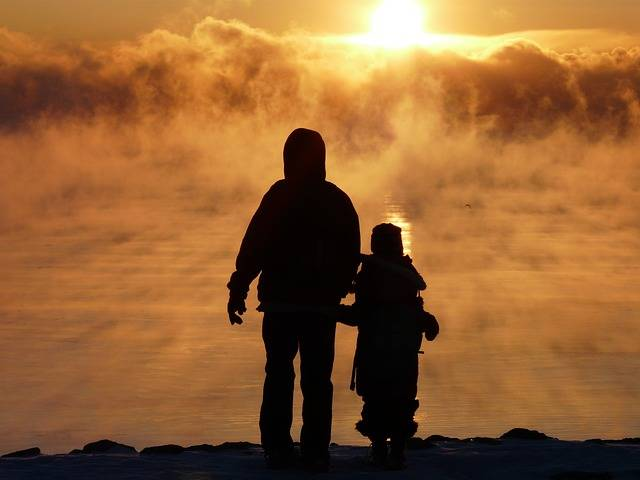 Fog Mist Golden - Free photo on Pixabay (381643)