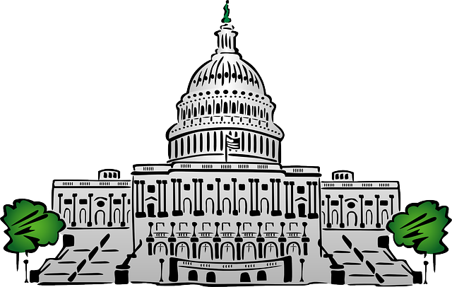 Capitol Washington Political - Free vector graphic on Pixabay (382072)