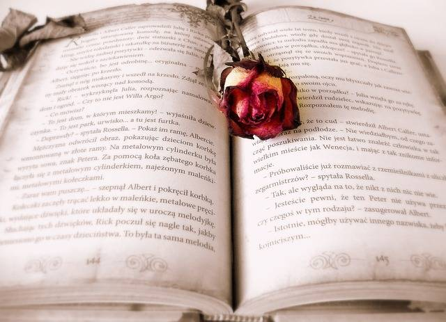 Book Reading Love Story - Free photo on Pixabay (383618)