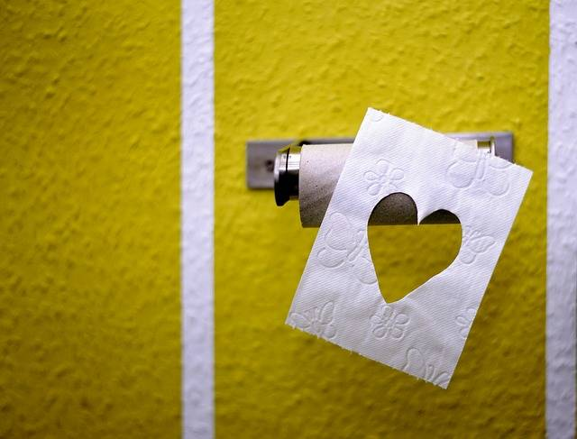 Toilet Paper Role Hygiene - Free photo on Pixabay (384179)
