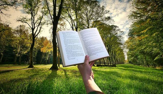 Book Hand Reading - Free photo on Pixabay (384973)