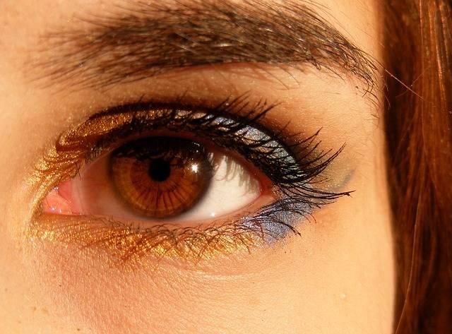 Brown Eyes Iris - Free photo on Pixabay (386783)