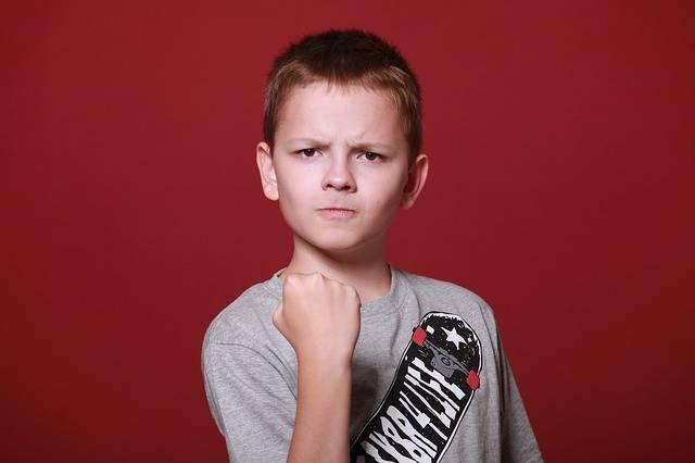 Boy Teen Schoolboy - Free photo on Pixabay (388884)