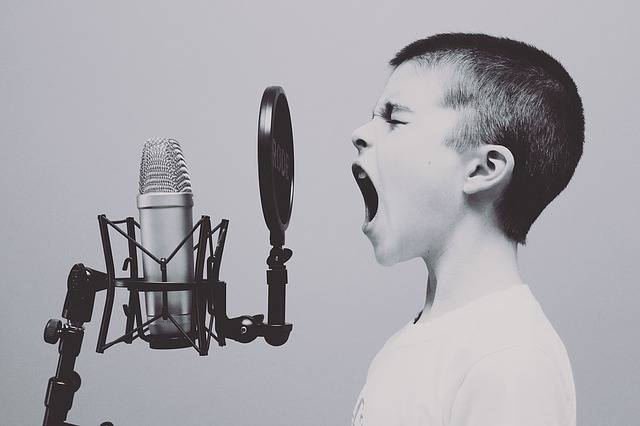 Microphone Boy Studio - Free photo on Pixabay (390420)
