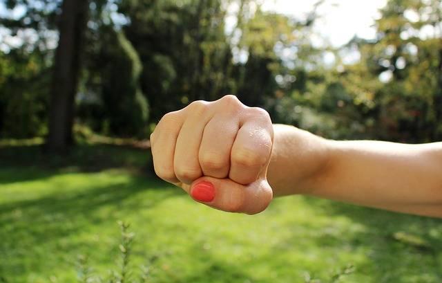 Fist Bump Anger Hand - Free photo on Pixabay (392306)