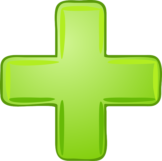 Plus Sign Green - Free vector graphic on Pixabay (392678)