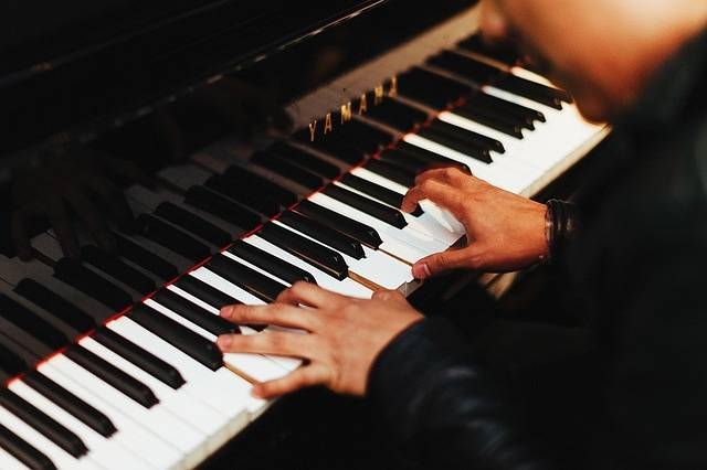 Pianist Music Musical - Free photo on Pixabay (393467)