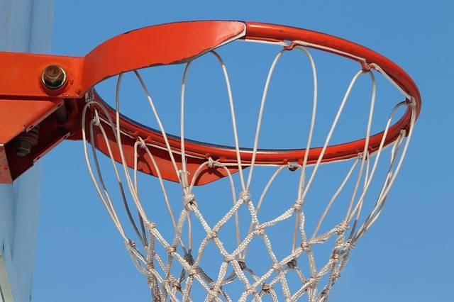 Basketball Sport Goji - Free photo on Pixabay (394056)