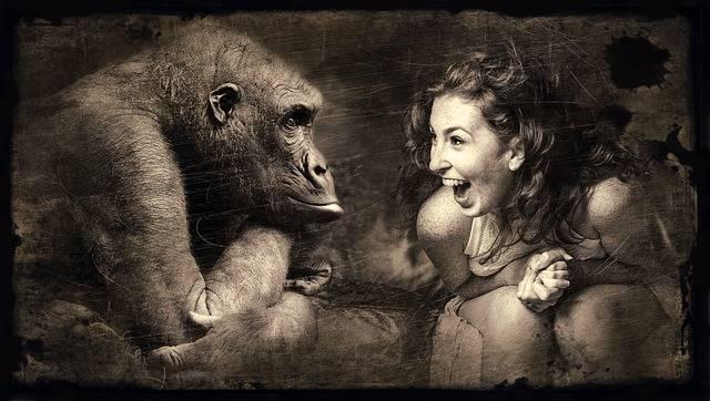 Composing Monkey Woman - Free photo on Pixabay (394862)