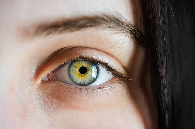 Eye Iris Macro - Free photo on Pixabay (394867)