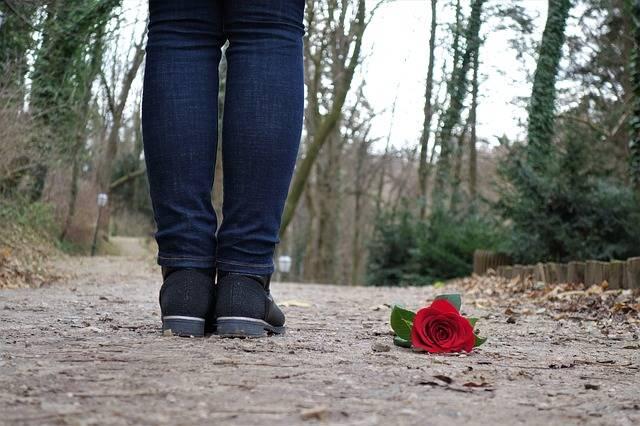 Red Rose On The Floor Love Sad - Free photo on Pixabay (395803)