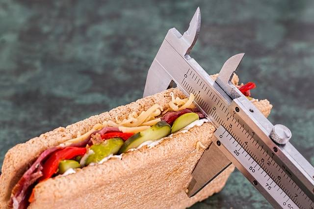 Diet Calorie Counter Weight Loss - Free photo on Pixabay (396290)