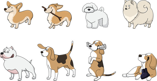 Dog Animal Corgi - Free vector graphic on Pixabay (396906)