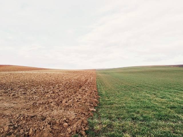 Farmland Meadow Field - Free photo on Pixabay (402727)