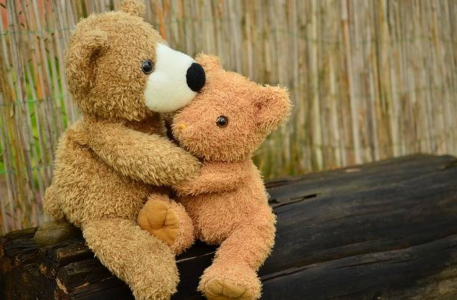 Teddy Bear Snuggle - Free photo on Pixabay (402929)