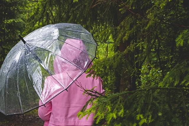 Umbrella Transparent Woman - Free photo on Pixabay (406840)