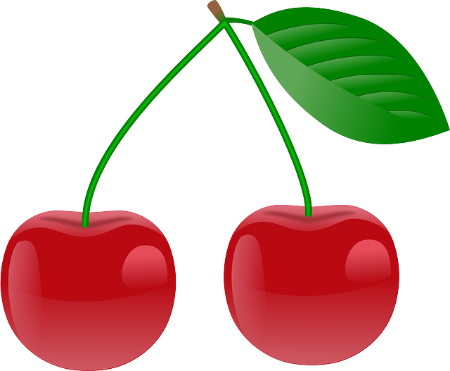 Cherry Red Ripe - Free vector graphic on Pixabay (409784)