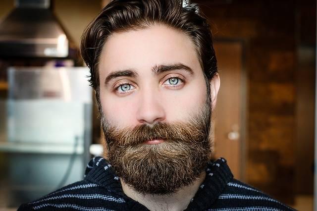 Beard Face Man - Free photo on Pixabay (411957)