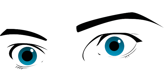 Eyes Blue Eyebrows - Free vector graphic on Pixabay (417734)