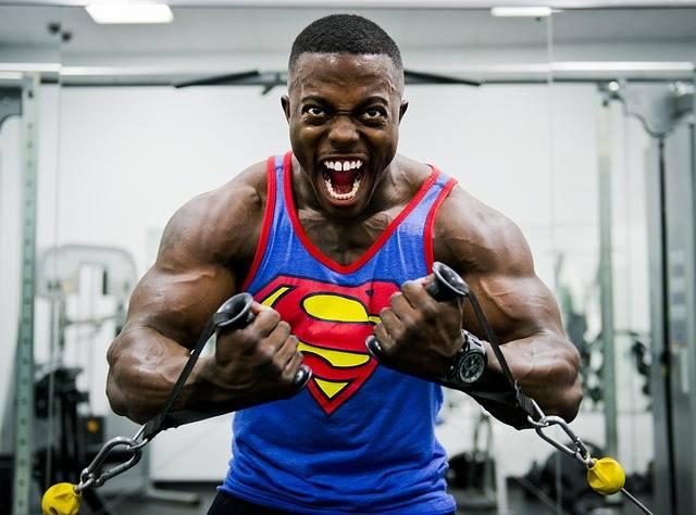 Bodybuilder Weight Training - Free photo on Pixabay (422573)