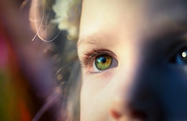 Girl Iris Eye - Free photo on Pixabay (428189)