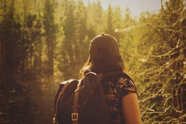 Hiker Hiking Nature - Free photo on Pixabay (431345)