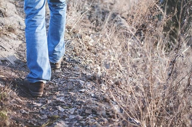Hiking Nature Walking Trails - Free photo on Pixabay (438051)