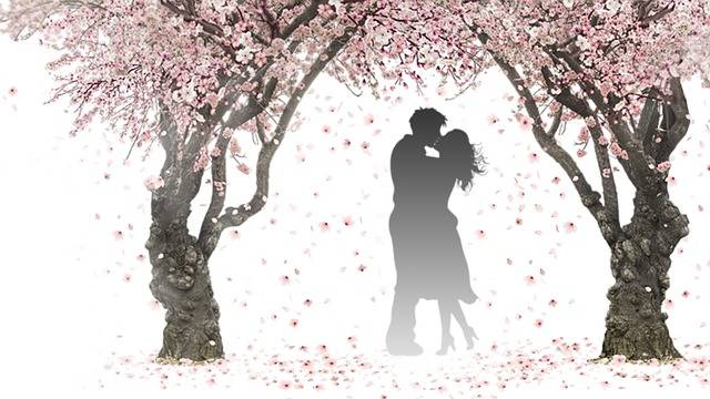 Nature Spring Pink - Free image on Pixabay (441979)