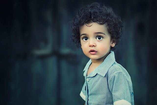 Child Boy Portrait - Free photo on Pixabay (442878)
