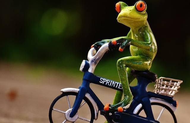 Frog Bike Uphill - Free photo on Pixabay (443172)