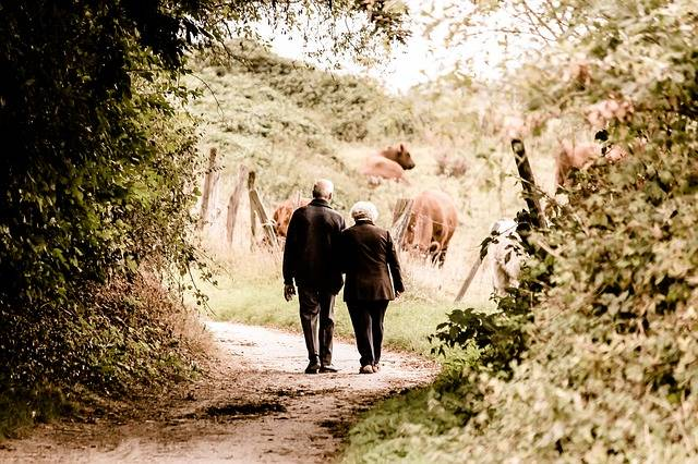 Pair Seniors Pensioners - Free photo on Pixabay (444898)