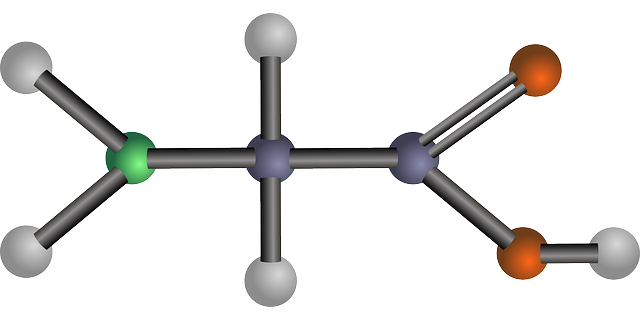 Glycine Amino Acid Biology - Free vector graphic on Pixabay (446216)