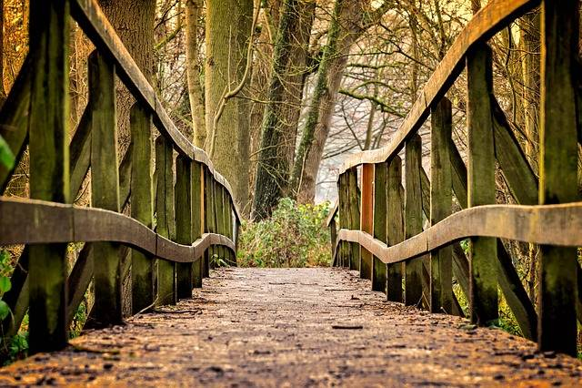 Away Bridge Wood - Free photo on Pixabay (446534)
