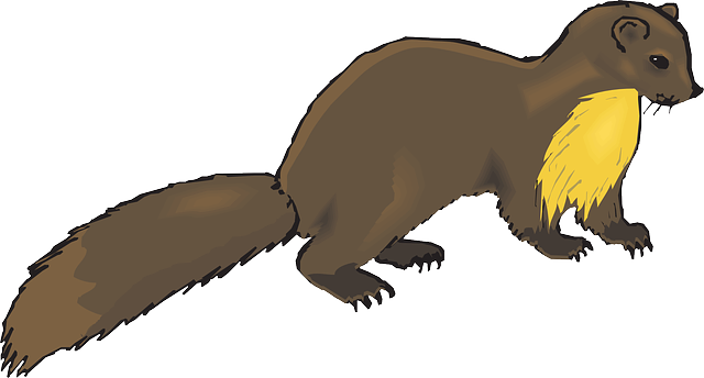 Brown Animal Tail - Free vector graphic on Pixabay (448095)