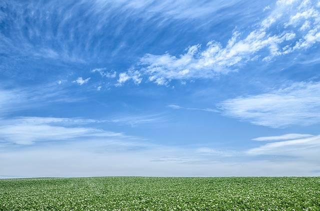 Blue Sky Green - Free photo on Pixabay (450384)