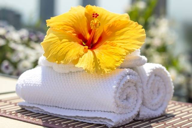 Towel Hibiscus Clean - Free photo on Pixabay (450473)