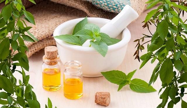 Essential Oils Flower Aromatherapy - Free photo on Pixabay (450498)