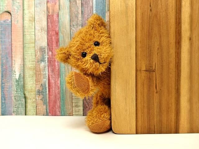 Teddy Bear Soft Toy - Free photo on Pixabay (452629)