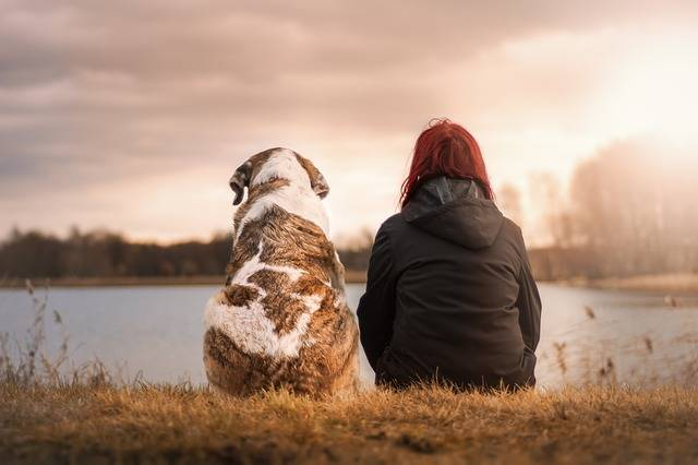 Friends Dog Pet Woman - Free photo on Pixabay (452885)