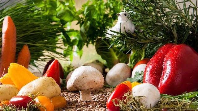 Vegetables Garden Mushrooms - Free photo on Pixabay (457838)