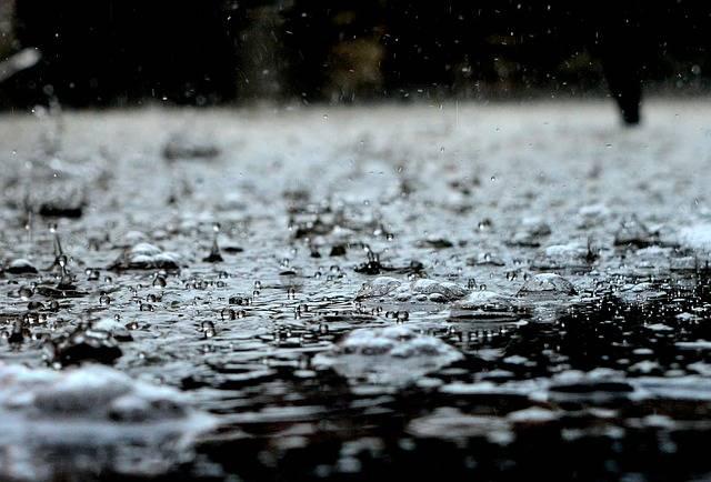 Drops Rain - Free photo on Pixabay (461220)