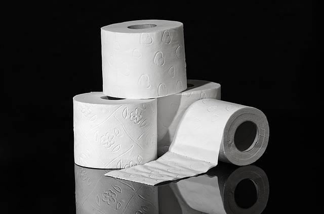 Toilet Paper Hygiene Role - Free photo on Pixabay (461268)