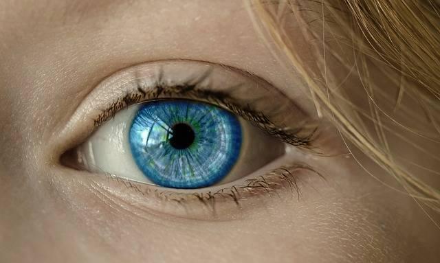 Eye Blue Iris - Free photo on Pixabay (464609)