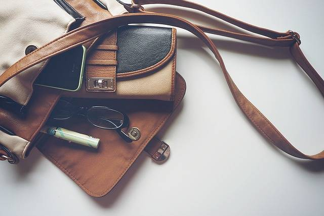 Handbag Purse Fashion - Free photo on Pixabay (465096)