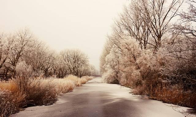 Frozen Hoarfrost Ice - Free photo on Pixabay (467403)